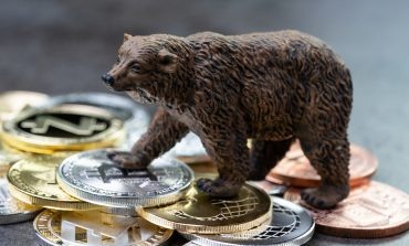 Bear standing on bitcoins